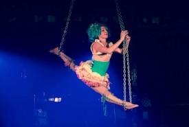 Daisy Chains - Aerialist / Acrobat