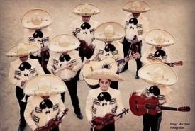 Mariachi Show Performance - Other Instrumentalist Guadalajara, Mexico