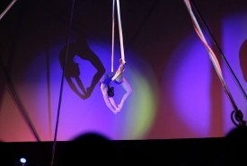 Tommy Tomlins - Aerialist / Acrobat Chicago, Illinois