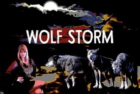 WOLF STORM - Cover Band Caerphilly, Wales