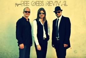 Stefan's Bee Gees Revival - 70s Tribute Band Las Palmas/Arrecife, Slovakia