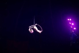 Static Aerial Hoop/ Flying Aerial Hoop - Aerialist / Acrobat London, London