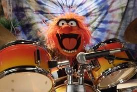 Dave Novak - Drummer Ontario