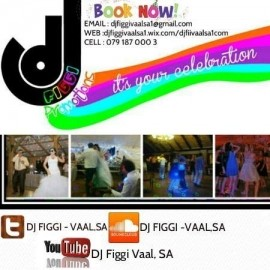 DJ FIGGI (SOUTH AFRICA) - Wedding DJ - Vanderbijlpark, Gauteng