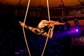 Kate Nelson - Aerialist / Acrobat - Melbourne, Victoria