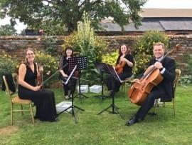 Ariella Strings - Quartet, Trio & Duo - String Quartet - Northampton, Midlands