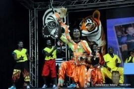 Tesaa Cultural Troupe - Aerialist / Acrobat - Greater Accra, Ghana