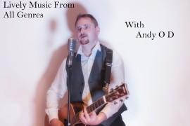 Andy O' Dea  - Guitar Singer - Leinster