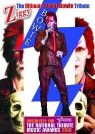 Stuart Roach: David Bowie - Neil Diamond - Frank Sinatra - Multi Tribute Artist - Neil Diamond Tribute Act - Bolton, North West England