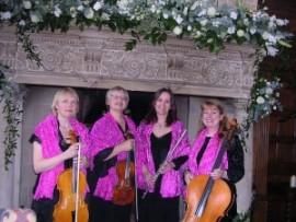 Pink Champagne String Quartet - String Quartet - South West