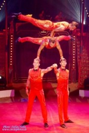 Four Kings - Other Artistic Entertainer - Ukraine/Nikolaev, Ukraine