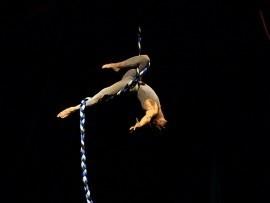 Joshua Dean - Aerialist / Acrobat - New York City, New York