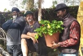 ( Miles ) William Coleman - Reggae / Ska Band - Inglewood, California