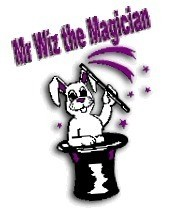 Mr. Wiz the Magician  image