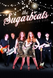 The Sugar Beats 6 to 8 piece Function Band - Function / Party Band - Drighlington, Yorkshire and the Humber