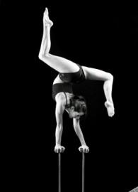 Morgan Oldham  - Aerialist / Acrobat - Boston, Massachusetts