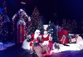 Santa's Circus - Other Children's Entertainer - Miami, Florida