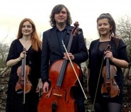 Aderyn String Trio - Violinist - United Kingdom, North of England