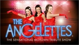 The Angelettes Motown Tribute Show  - Soul / Motown Band - Drighlington, Yorkshire and the Humber