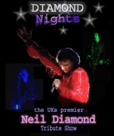 Mike Leigh / Diamond Nights  - Neil Diamond Tribute Act - Leicestershire, East Midlands