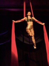 Aerial Silks and Dance Trapeze - Aerialist / Acrobat - Portland, Oregon