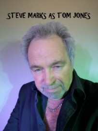 Stevemarks - Tom Jones Tribute Act - Poole, South West