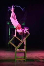 Rachel Ann Conner  - Aerialist / Acrobat - somerset, South West