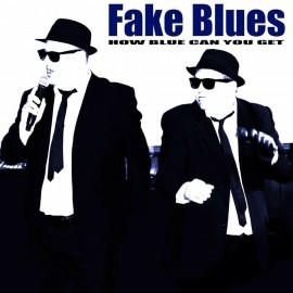 fake blues - Tribute Act Group - hull, East of England