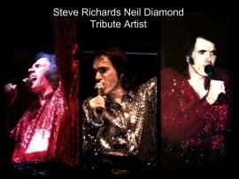 Steve Richards Tributes  - Neil Diamond Tribute Act - Chicago, Illinois