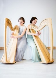2 of Harps  - Multi-Instrumentalist - Sandgate, South East