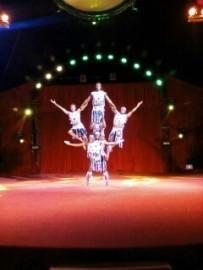 Jungle warriors acrobats  - Other Speciality Act - Kenya