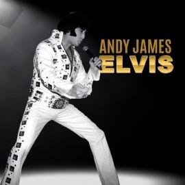 Elvis in Concert - Elvis Impersonator - Wolverhampton, West Midlands