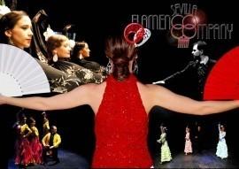Sevilla Flamenco - Flamenco Dancer - Spain