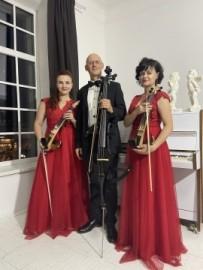 Veronika Prokopenko - Electric Violinist - Dnipro, Ukraine