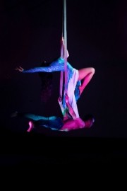 Synergy Duo - Aerialist / Acrobat - South Africa, Thailand
