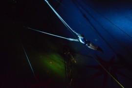 Miss Jones - Aerialist / Acrobat - London