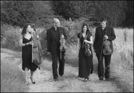 Kings String Quartet - String Quartet - Worcestershire, Midlands
