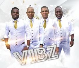 Vibz image