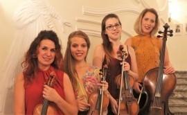 Silver Moon String Quartet - Violinist - Debrecen, Hungary