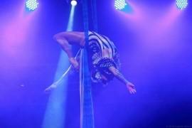 Eloise Currie Circus Artist - Aerialist / Acrobat - london, London
