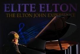 Elite Elton - Elton John Tribute Act - East Molesey, South East