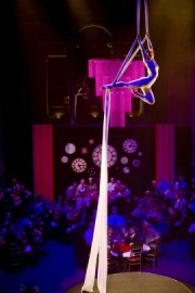 The Dream Performance - Aerialist / Acrobat - London, London