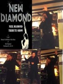 New Diamond - Neil Diamond Tribute  - Neil Diamond Tribute Act - Kent, South East