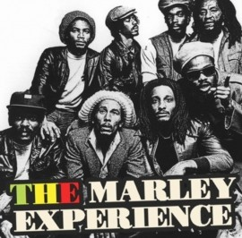 The Marley Experience - 80s Tribute Band - Birmingham, West Midlands