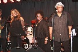 Lonne G & G&G Show Band - Blues Band - Chicago, Illinois