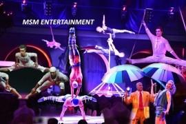 MSM-Entertainment - Other Speciality Act - Ukraine/Kiev, Ukraine