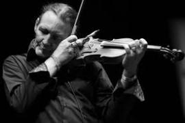 Daniel Willem - Violinist - New York, New York