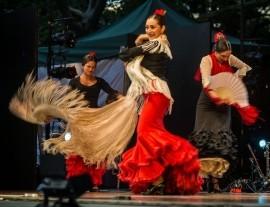 Flamenco y Sol - Flamenco Dancer - New York, New York