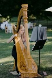 Becca Schaefer, Harpist - Harpist - Eugene, Oregon