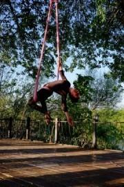 Gülşah Ilgın - Aerialist / Acrobat -